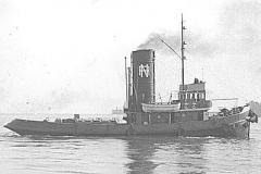 Scutolo 1952
